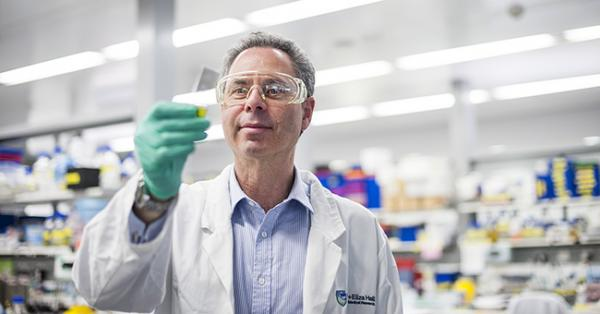 Professor Geoff Lindeman in a WEHI lab, looking at a slide.
