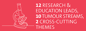 12 Research & Education Leads, 12 tumour streams, 2 cross-cutting themes